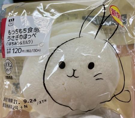 f:id:usa-kounosuke:20210922104751j:image