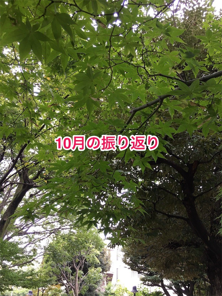 f:id:usabo:20161101184720j:image