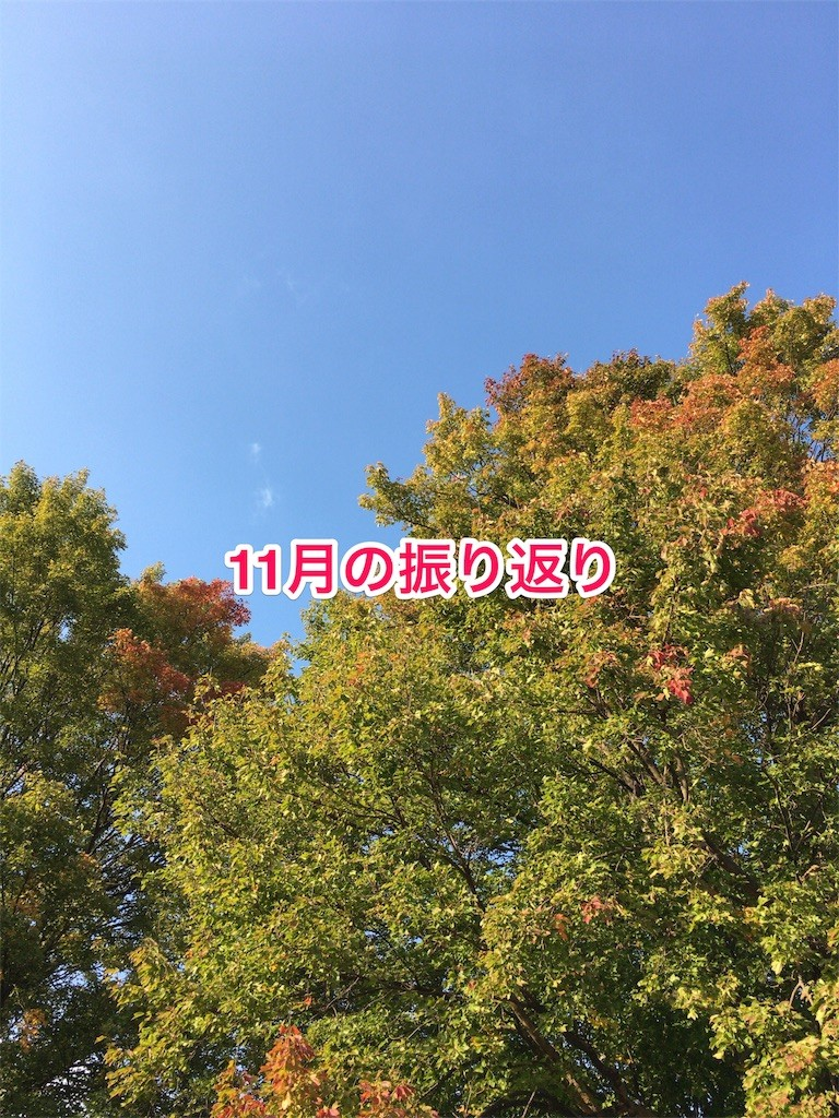 f:id:usabo:20161202083024j:image