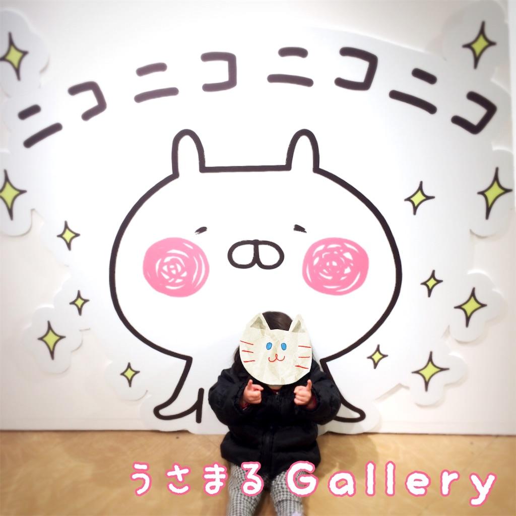f:id:usafumi:20170128013447j:image