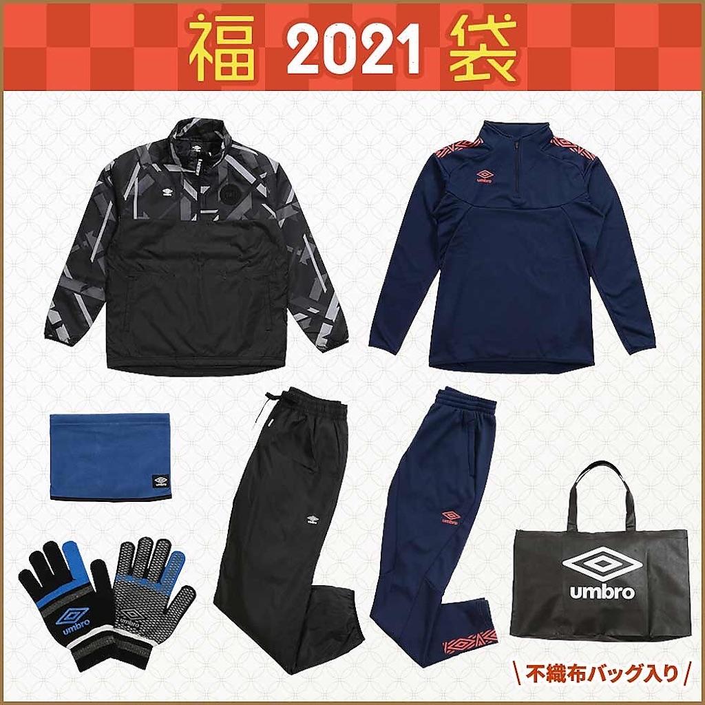 f:id:usafumi:20210105152544j:image