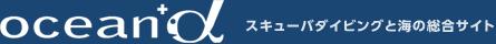 f:id:usagi_2017:20181007131143j:plain