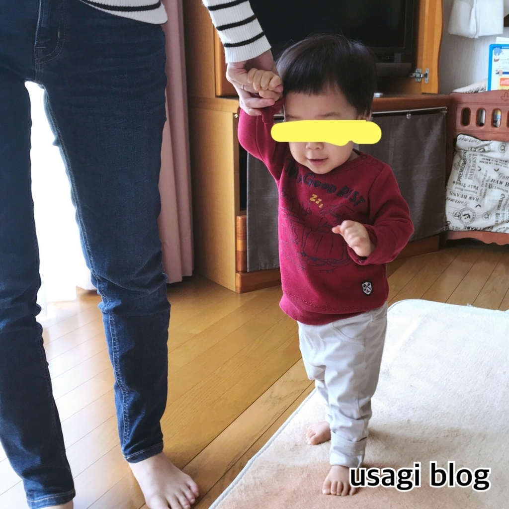 f:id:usagi_k:20180405090810j:plain