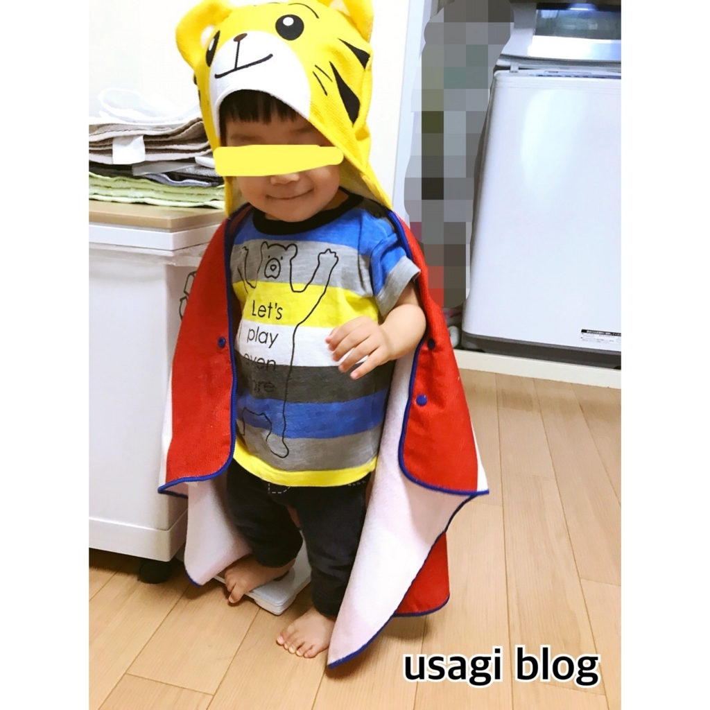 f:id:usagi_k:20180710081223j:plain
