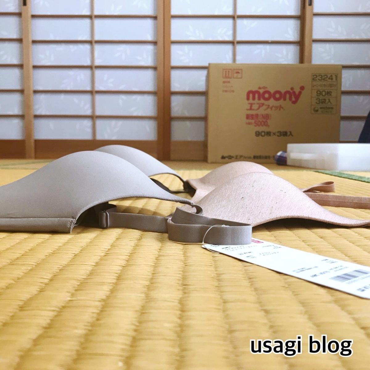 f:id:usagi_k:20190423101749j:plain