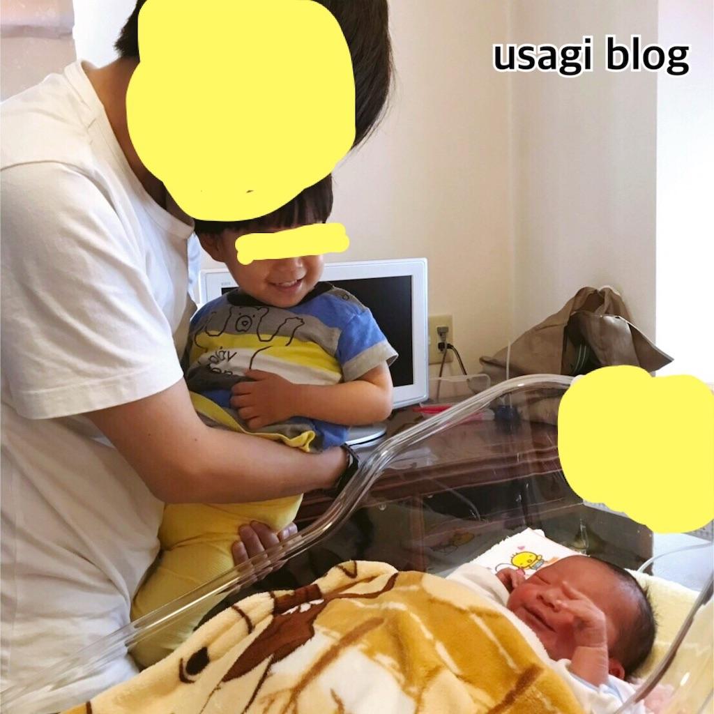f:id:usagi_k:20190519194716j:image