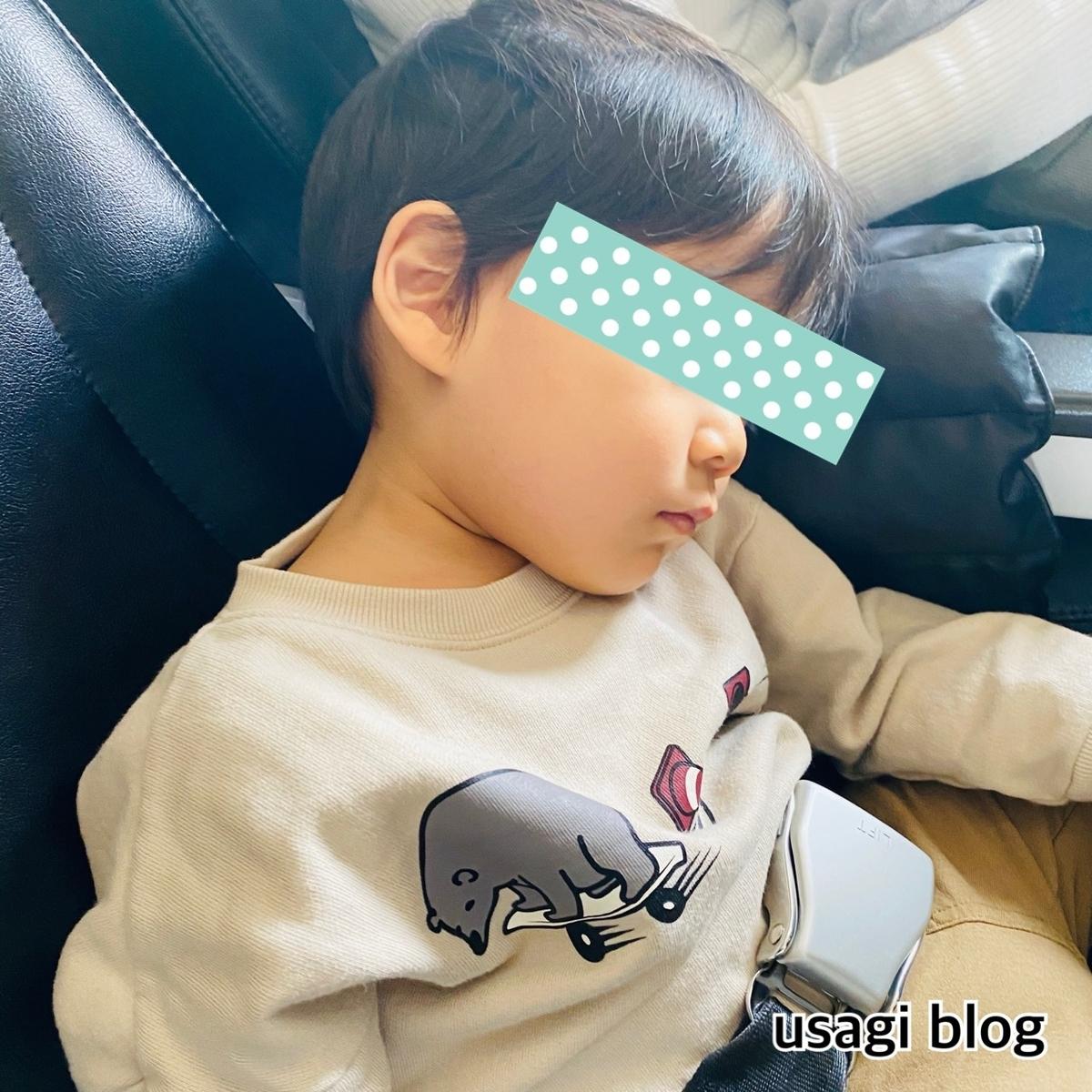 f:id:usagi_k:20200106114401j:plain