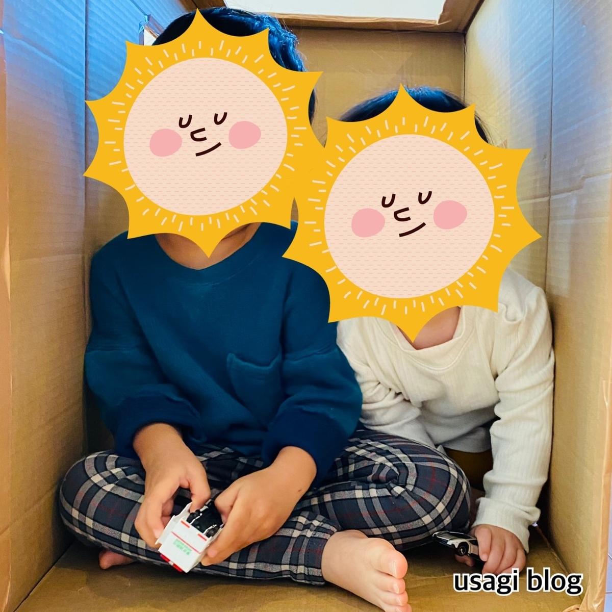 f:id:usagi_k:20201126113714j:plain