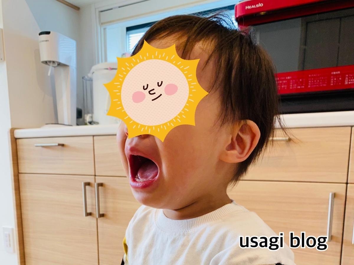 f:id:usagi_k:20210510100430j:plain