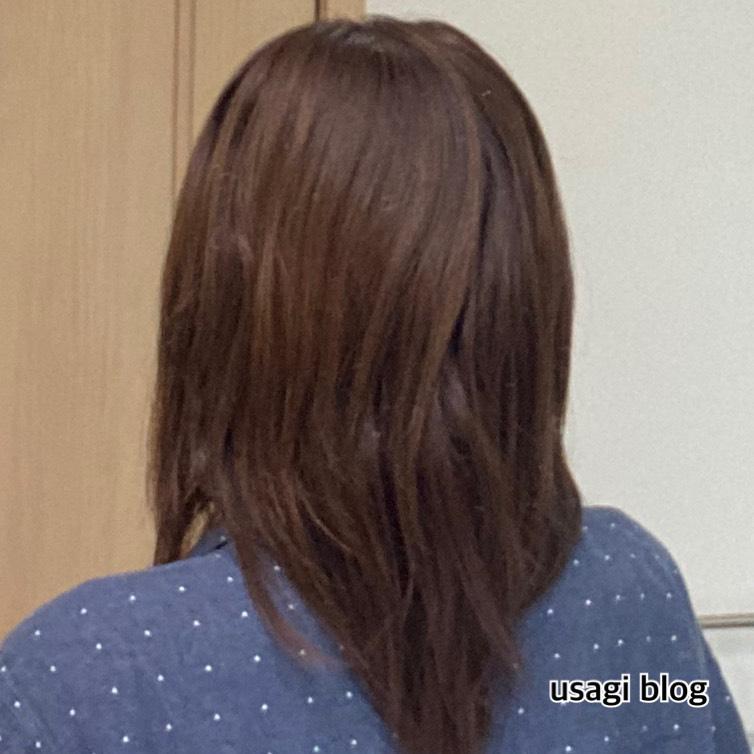 f:id:usagi_k:20210520104219j:plain