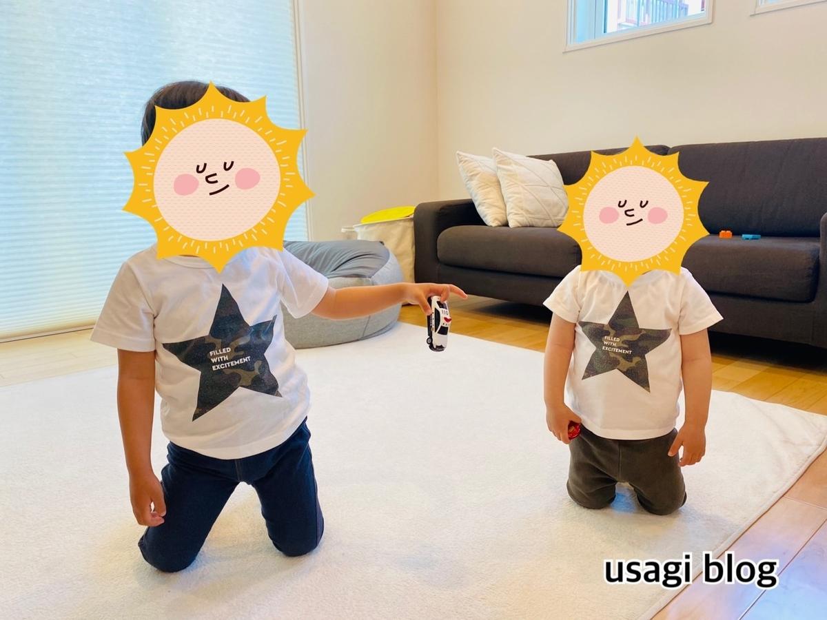 f:id:usagi_k:20210527101628j:plain
