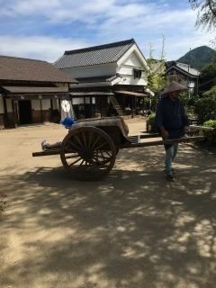 f:id:usagimiyako:20180930070033j:plain