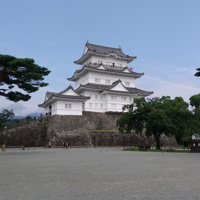 f:id:usagimiyako:20200812152537j:image