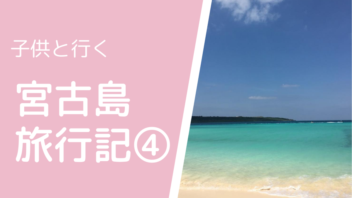 f:id:usagimiyako:20200821150733p:plain