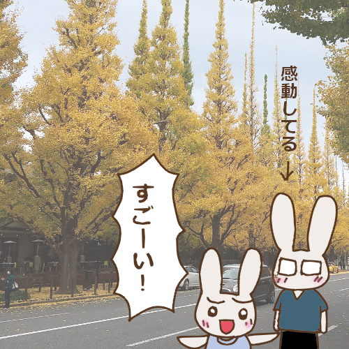 f:id:usagimiyako:20201120154353p:plain