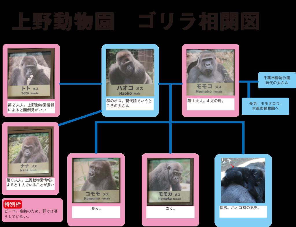 f:id:usaginokainushi:20180429150912p:plain