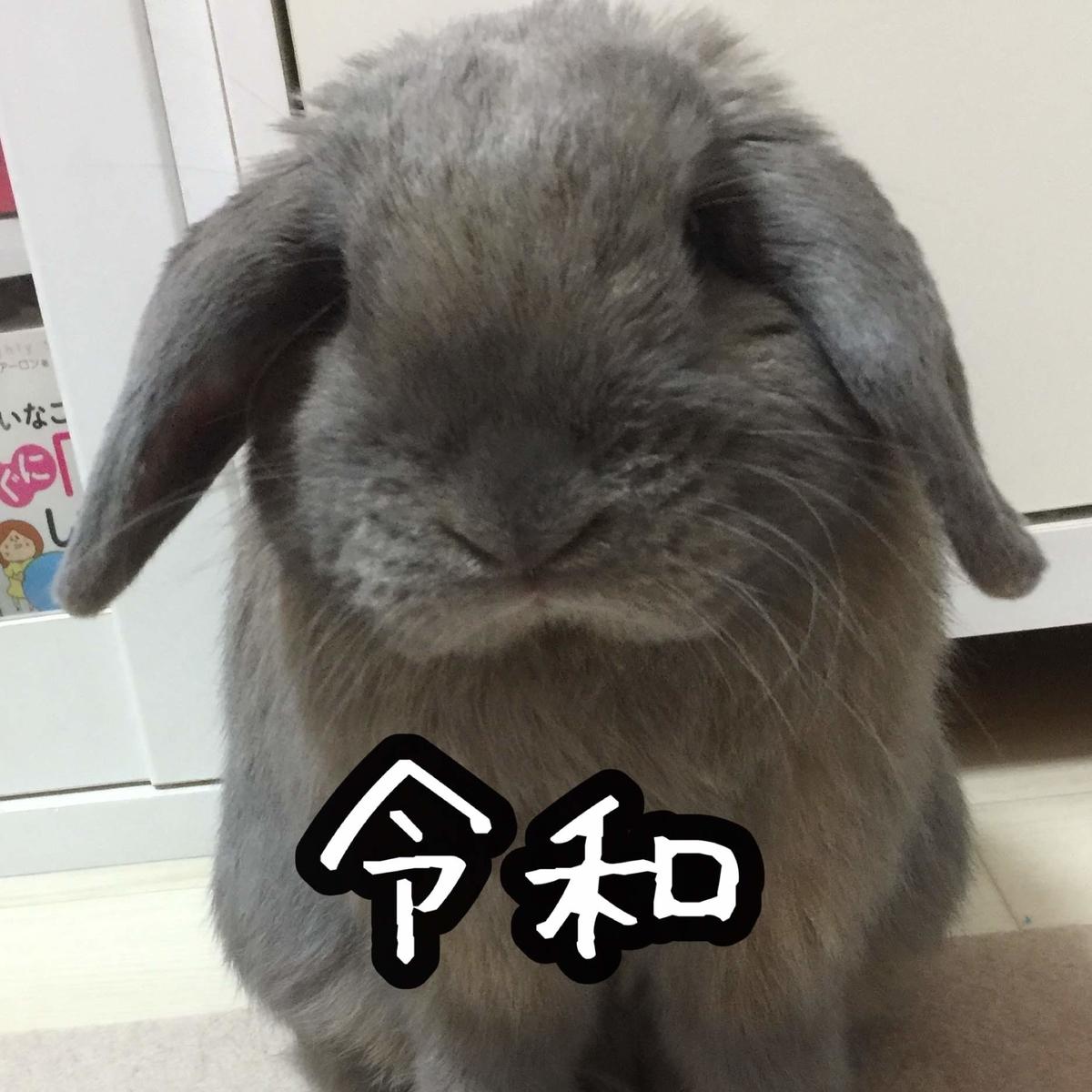 f:id:usagitonokurashi:20190507162503j:plain