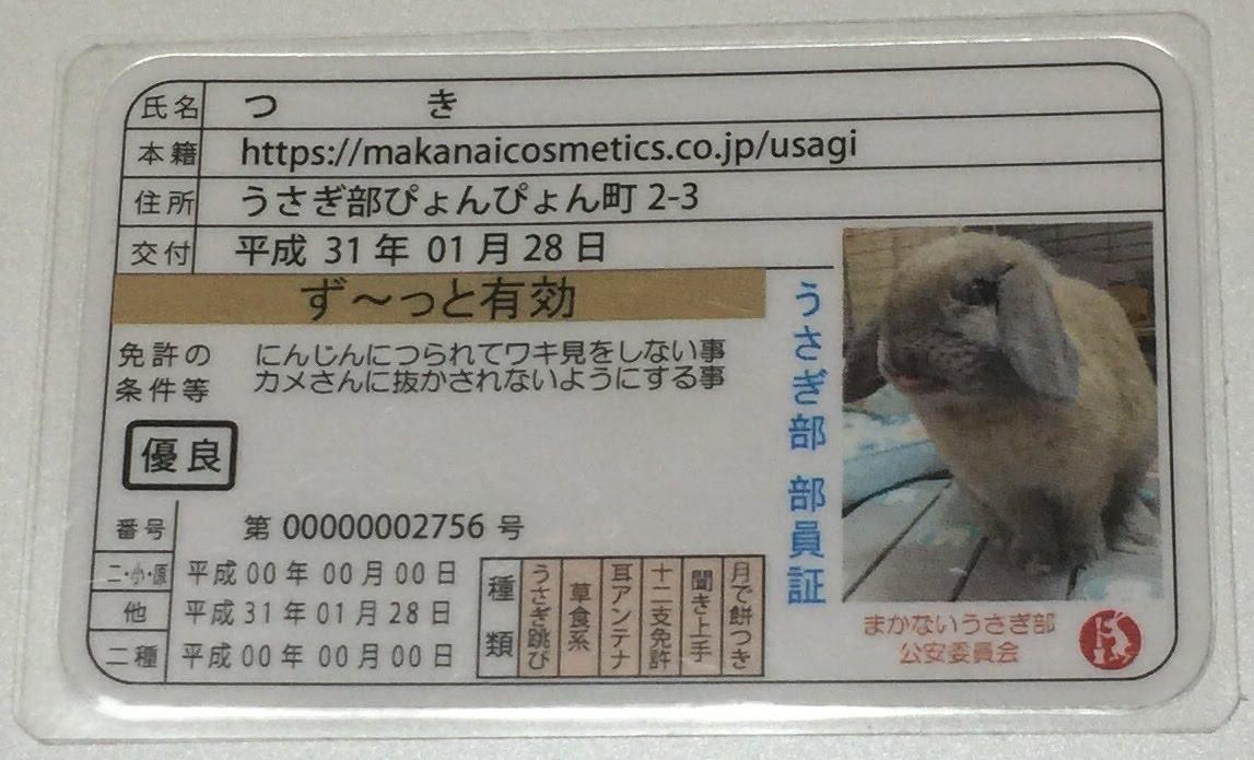 f:id:usagitonokurashi:20190529003732j:plain
