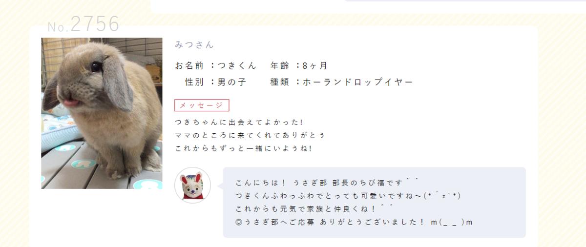 f:id:usagitonokurashi:20190529004340p:plain