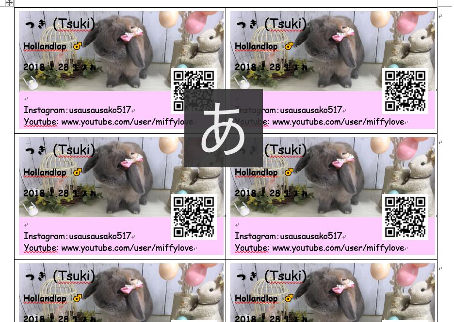 f:id:usagitonokurashi:20191007191835p:plain
