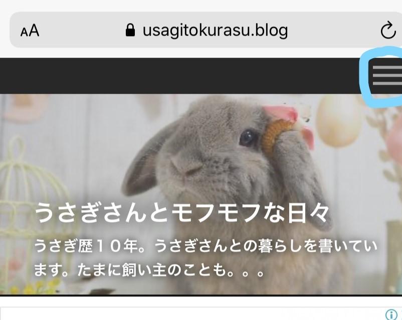 f:id:usagitonokurashi:20200130161412j:plain
