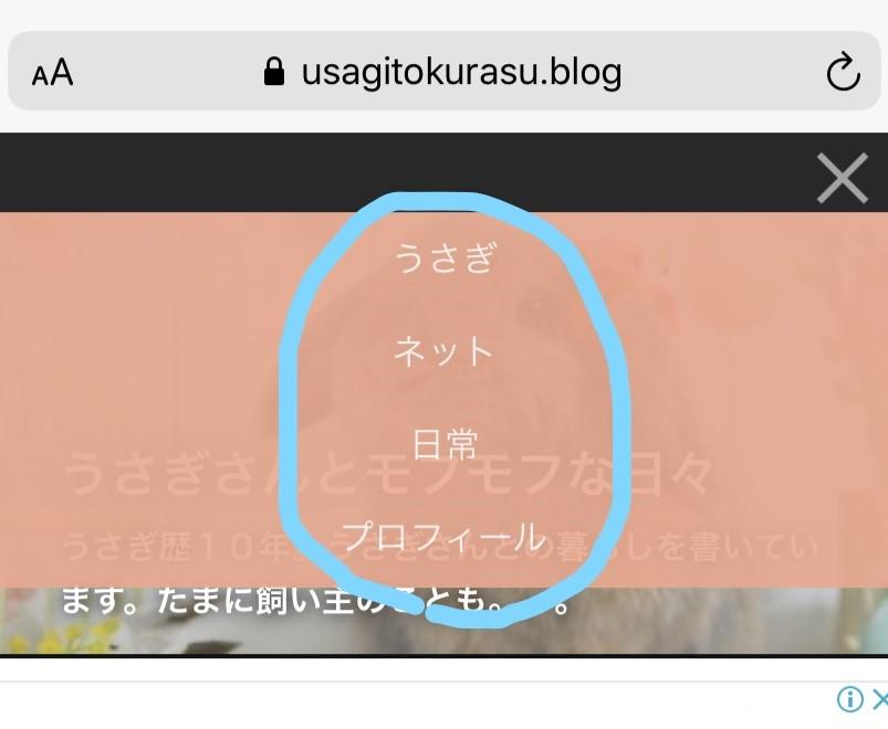 f:id:usagitonokurashi:20200130161436j:plain