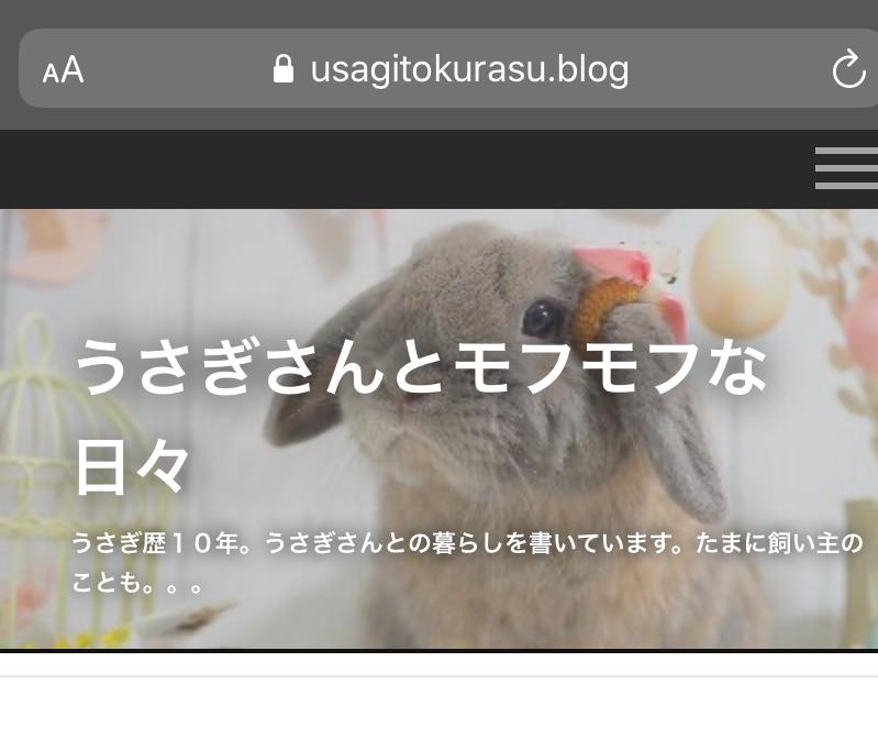 f:id:usagitonokurashi:20200130162317p:plain