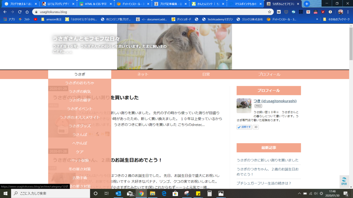 f:id:usagitonokurashi:20200130174832p:plain