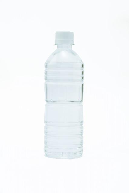 うさぎにとって水が不可欠な理由