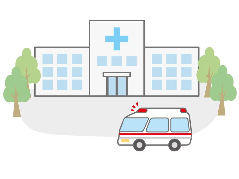 動物の夜間救急病院について