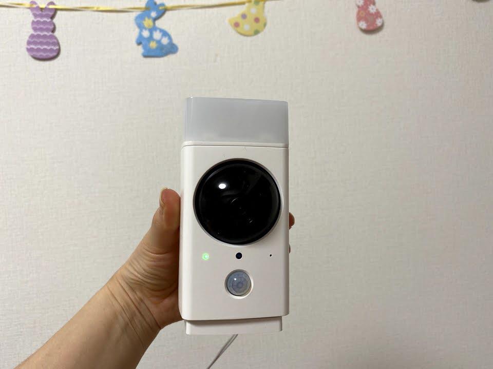 うさぎのつきに、ペット見守り用に監視カメラを買いました