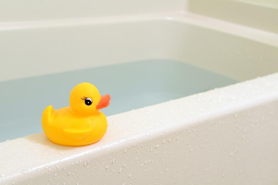 うさぎにお風呂は必要?うさぎをお風呂に入れてはいけない理由!