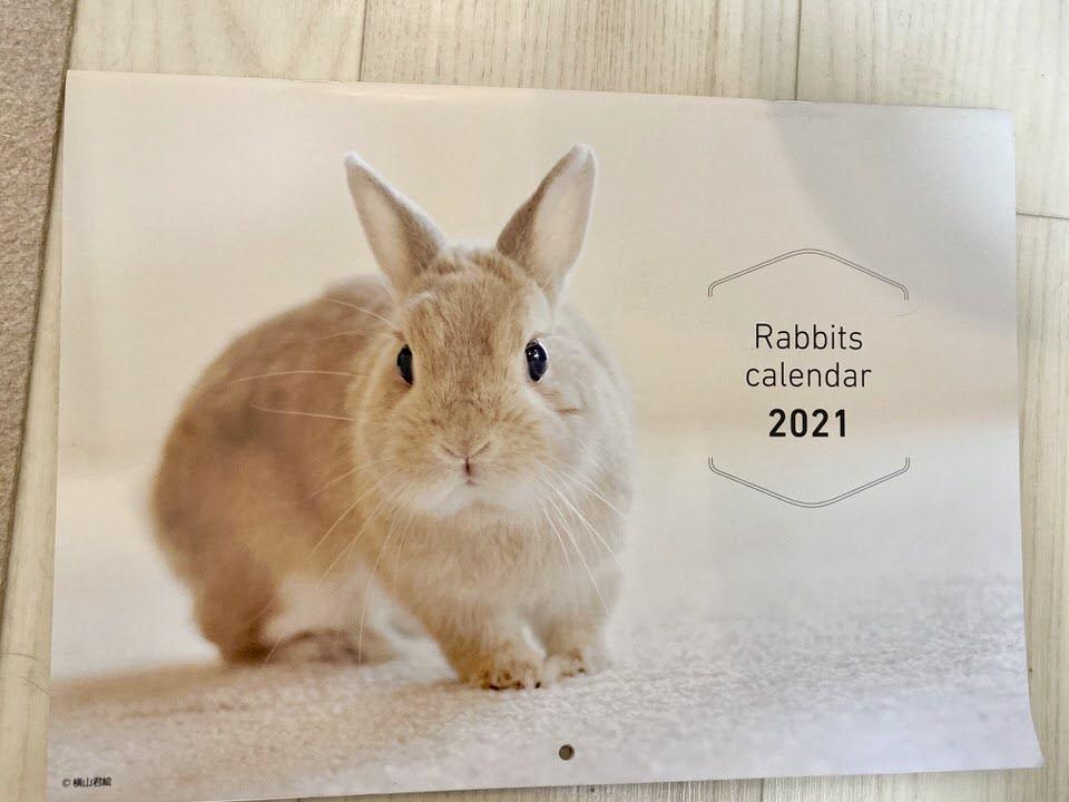 うさぎのきもちVol.2付録 うさぎカレンダー