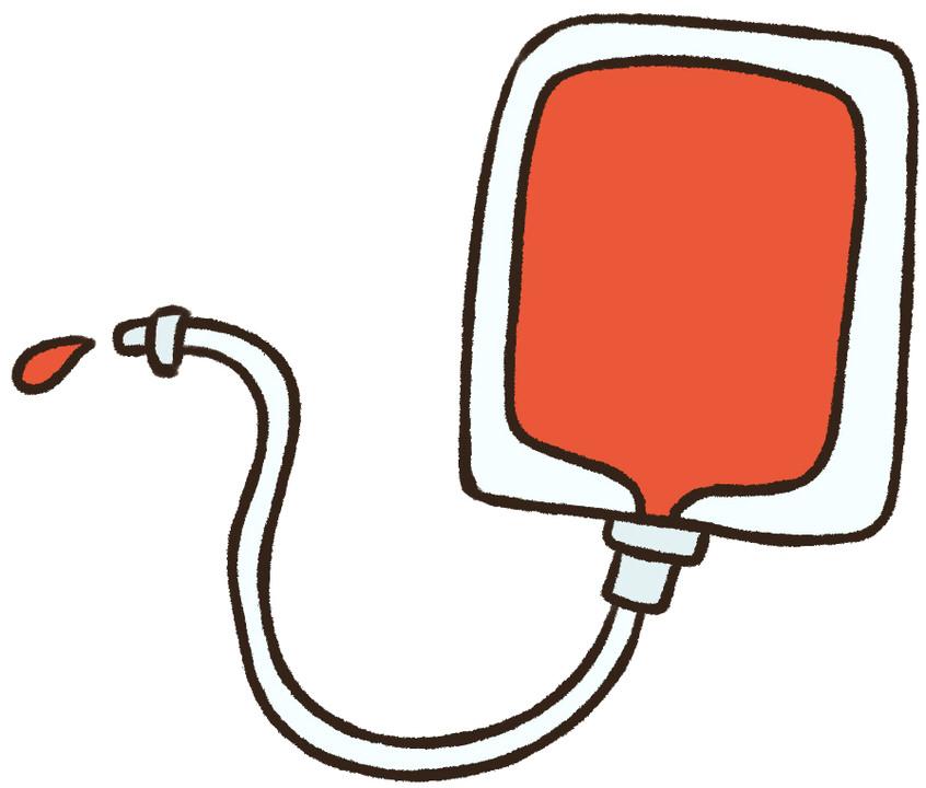 うさぎに輸血が必要になった場合