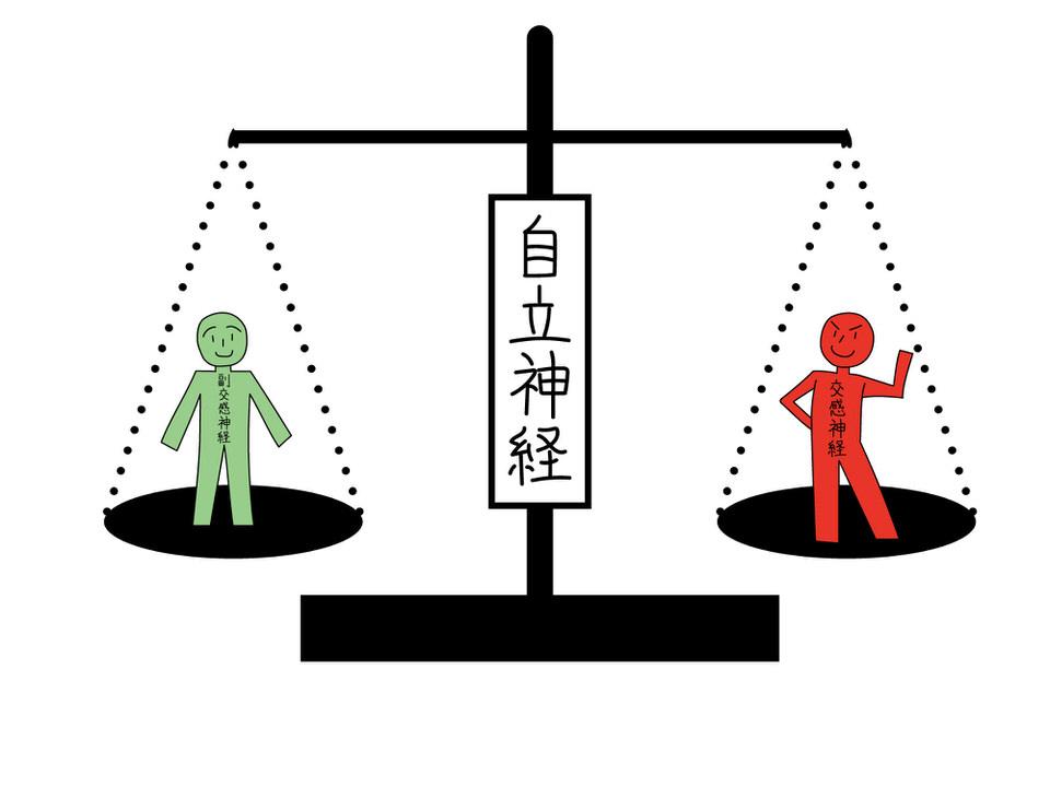 うさぎの体を守る3つの機能