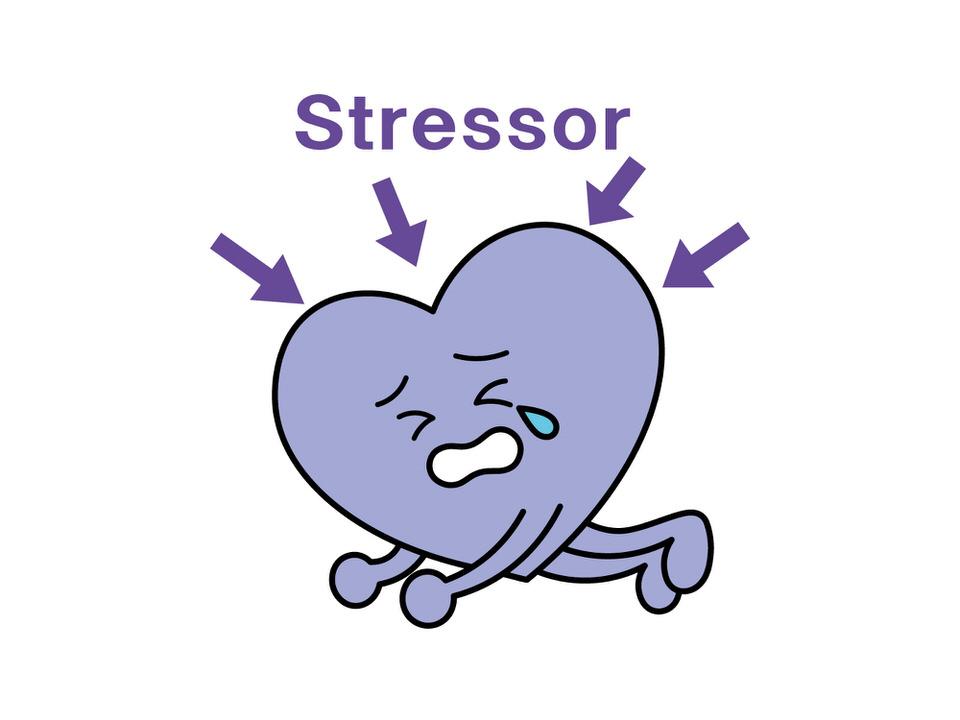 ストレスの種類