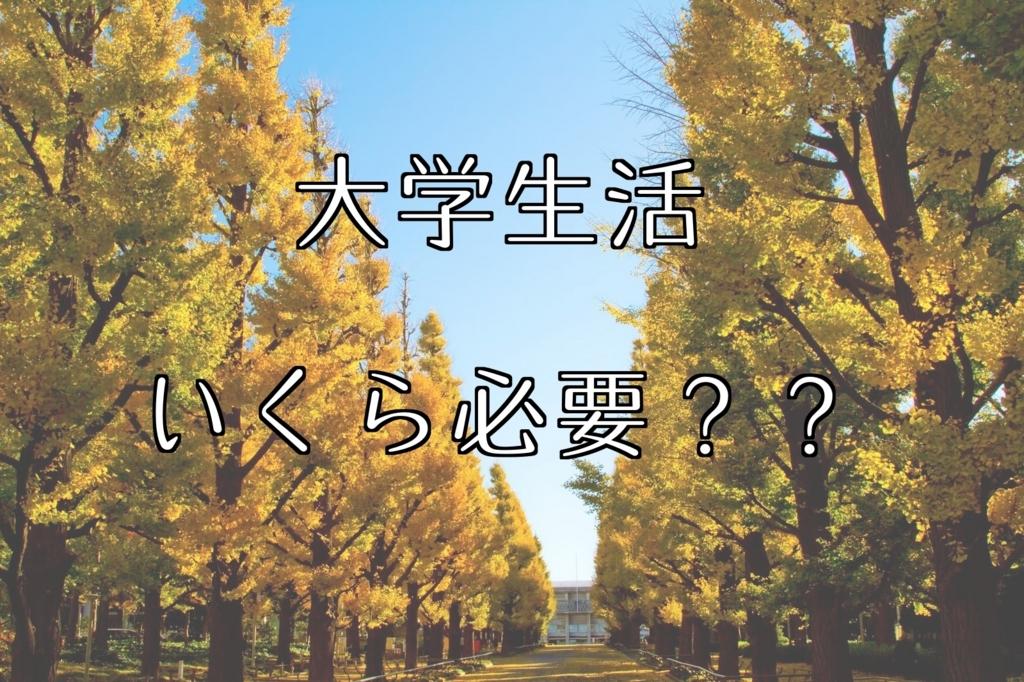 f:id:usagiwaka:20171022010223j:plain