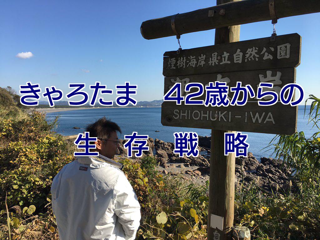 f:id:usagiwaka:20180108155921p:plain