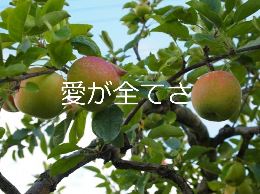 f:id:usagoke:20170522233925j:plain
