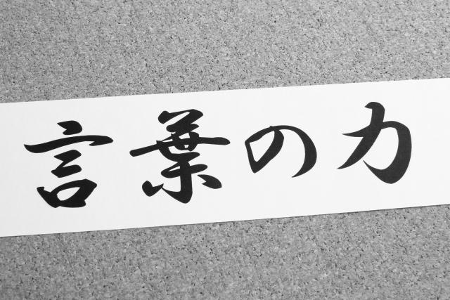 f:id:usagoke:20170623130926j:plain