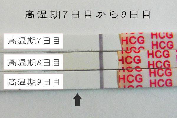 f:id:usako-diary:20170819115502j:plain