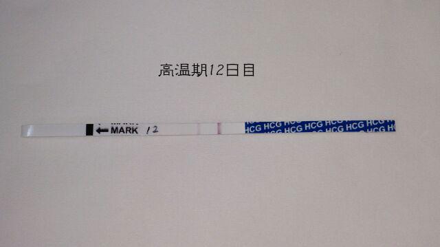 f:id:usako-diary:20171019232337j:plain