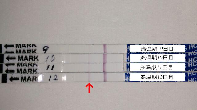 f:id:usako-diary:20171019232833j:plain