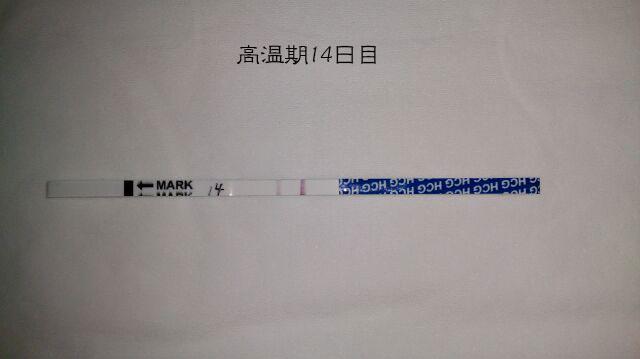 f:id:usako-diary:20171022003341j:plain