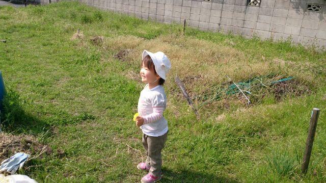 f:id:usako-diary:20180522003334j:plain