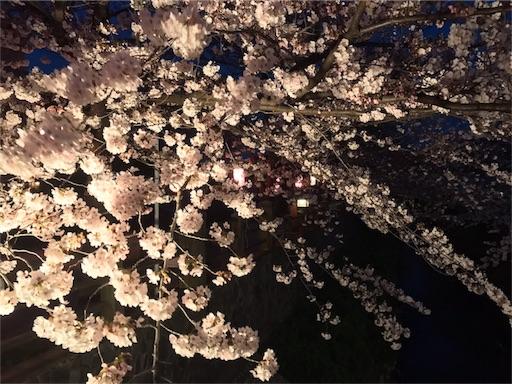 f:id:usako-k249:20170407141114j:image