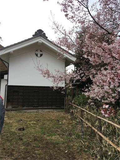f:id:usako-k249:20170419144059j:image