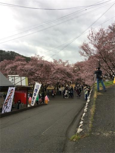 f:id:usako-k249:20170419144544j:image