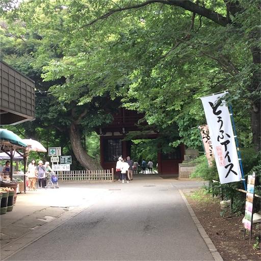 f:id:usako-k249:20170629224841j:image