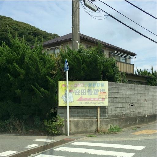 f:id:usako-k249:20170801161158j:image
